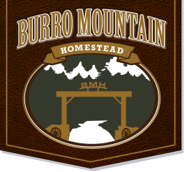 Burro Mountain Homestead